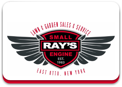 Ray's Small Engine llc