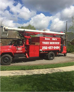 Unlimited Tree Services